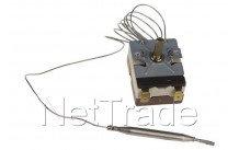 Universel - Thermostat avec sonde ego  plus livrable - 5513032060